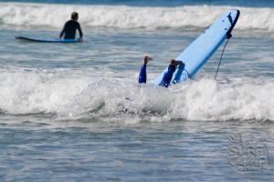 surf camp 2